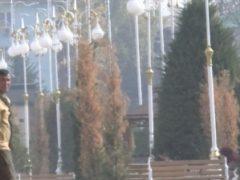 После визита Рахмона в новом сквере Куляба засохли вечнозеленые деревья.