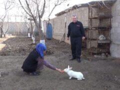 Экс-глава гиссарского села — «ньюсмейкер» вышел на свободу по амнистии