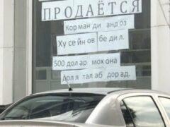 Предприниматель из Согда устроил необычную акцию протеста против действий налоговиков