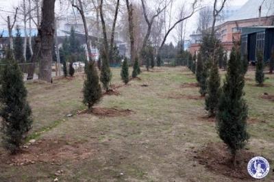 ФФТ поддержала акцию «Превратим Душанбе в зеленый город»